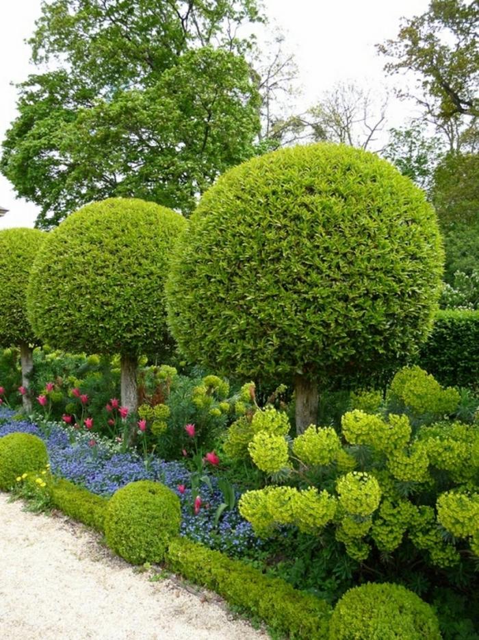 haie-avec-fleurs-le-vert-idée-jardin -des-arbres-rondes