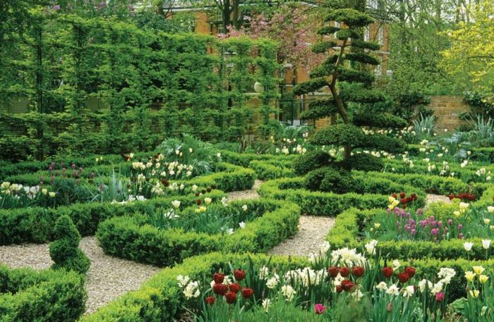 haie-avec-fleurs-le-vert-idée-jardin-haie-fleurie