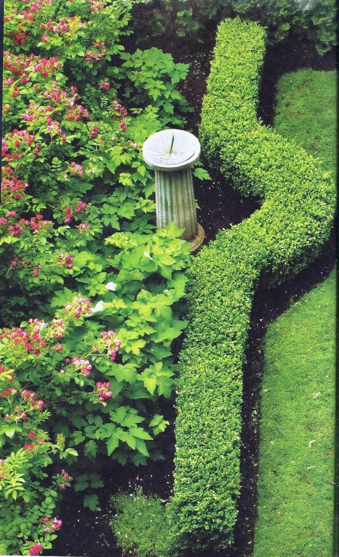 haies-fleuries-feuillage-persistant-labirint-buisson