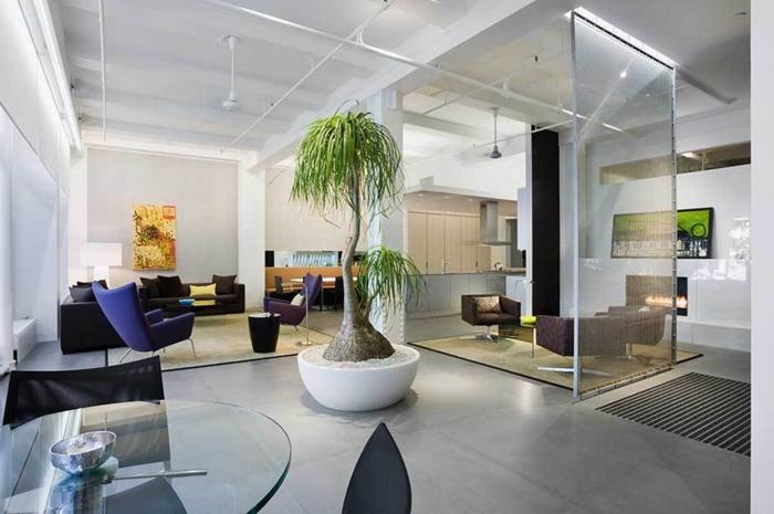 idée-originale-pour-la-decoration-loft-salon-salle-a-manger-cuisine-toute-une-piece