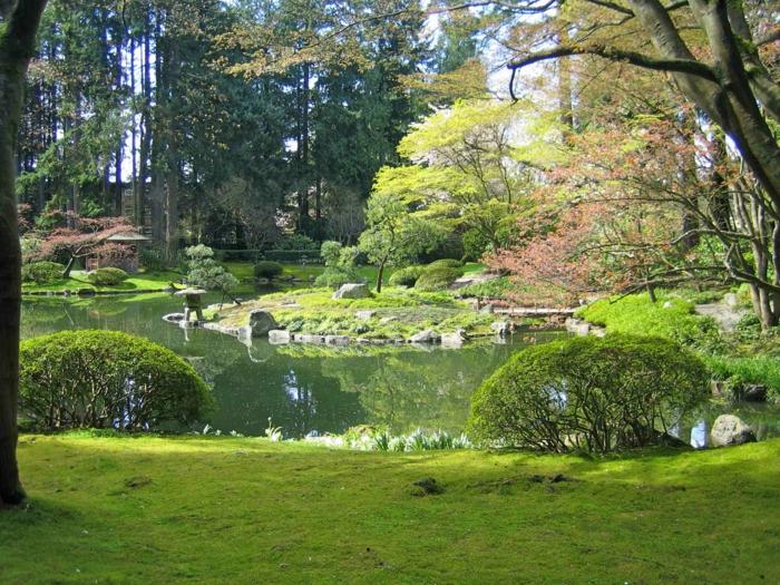 jardin-japonais-zen-oriental-idée-créative-arbres