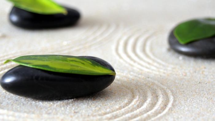 jardin-zen-japonais-idées-extérieur-feuille-vert