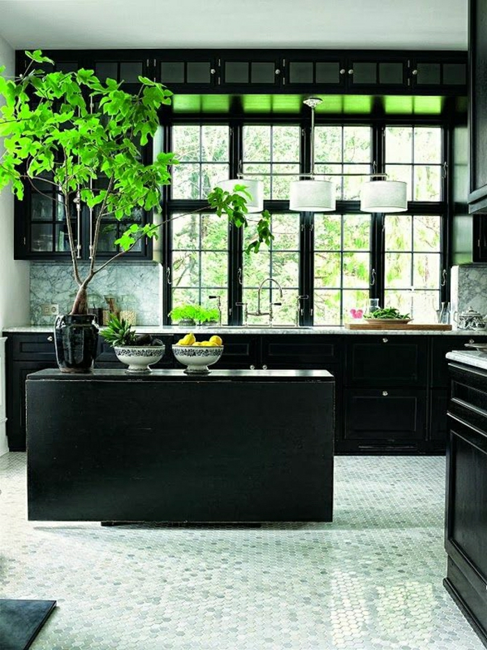 Très choisir quelle couleur pour une cuisine? EV51