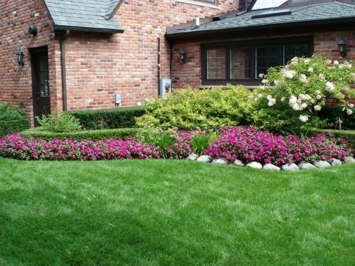les-arbuste-fleurs-jaunes-jardin-bien-aménagé-maison-briques
