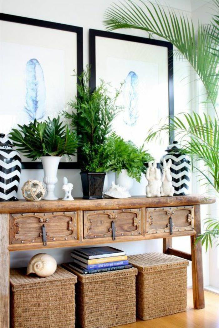 maison-feng-shui-entrée-zen-aménagement-feng-shui-plantes-vertes-meubles-en-bois-massif