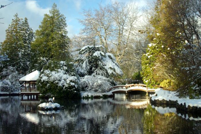 petit-jardin-japonais-zen-pierres-jardin-japonnais-jardin-zen-japonais