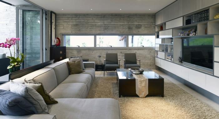 salon-stylé-avec-meuble-tv-industriel-aménager-son-salon