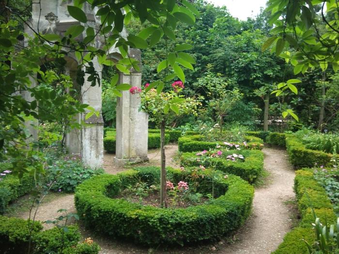 un-haie-fleurie-feuillage-persistant-jardinage-professionnel
