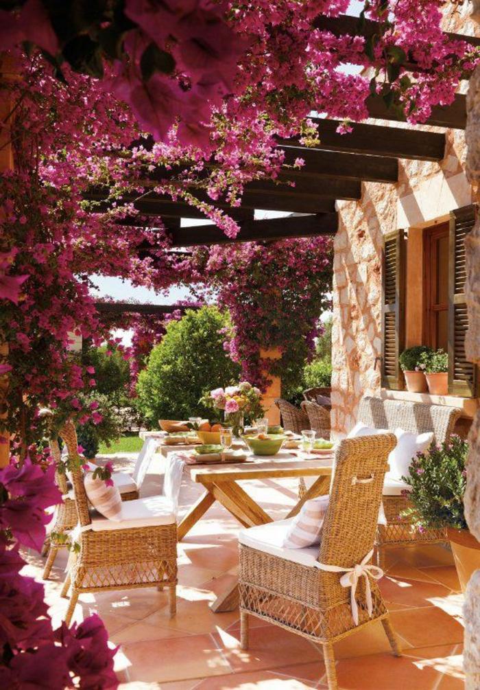 0-plante-grimpante-extérieur-plantes-grimpantes-pour-la-maison-extérieur-joli-jardin-avec-plante-grimpante-persistant-violet