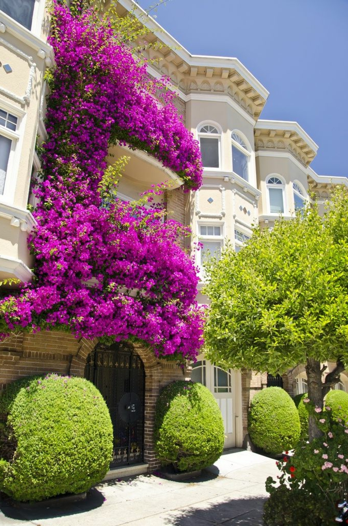 1-balcon-fleuri-beaucoup-de-fleurs-pour-le-balcon-terrasse-amenagement-balcon-idee-amenagement-terrasse-idee-deco-terrasse