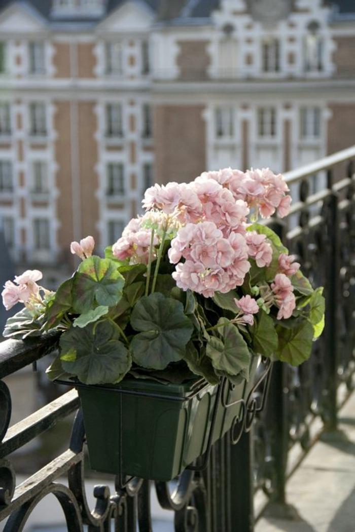 1-idee-deco-terrasse-fleurs-amenagement-balcon-idee-amenagement-terrasse-fleurir-son-balcon
