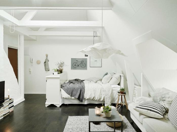 aménagement-de-combles-sol-en-parquette-noir-tapis-gris-meubles-sous-pente