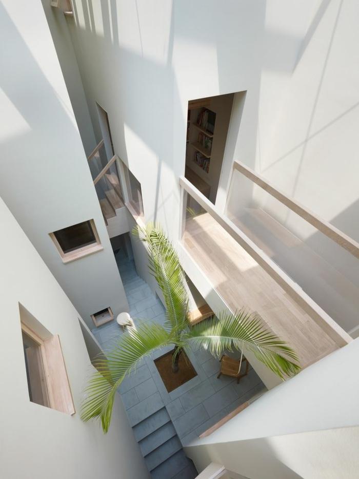 architecture-japonaise-intérieur-japonais-plante-verte-d-intérieur-vaste-couloir-murs-blancs