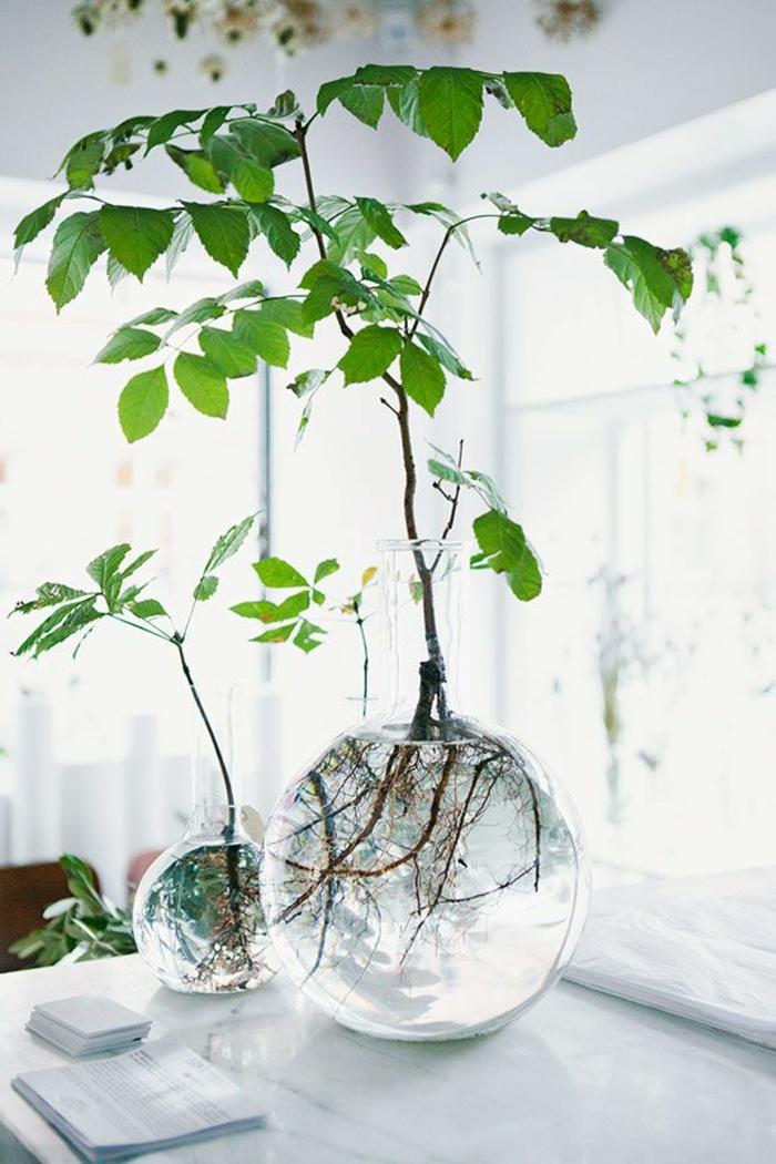 Decoration D Un Verre En Vase