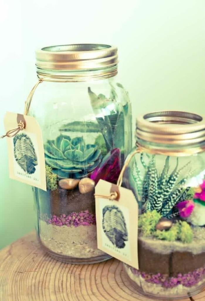 bonbonnière-mariage-dragées-originale-boite-verre-plante-verte-cactus-dans-bocal