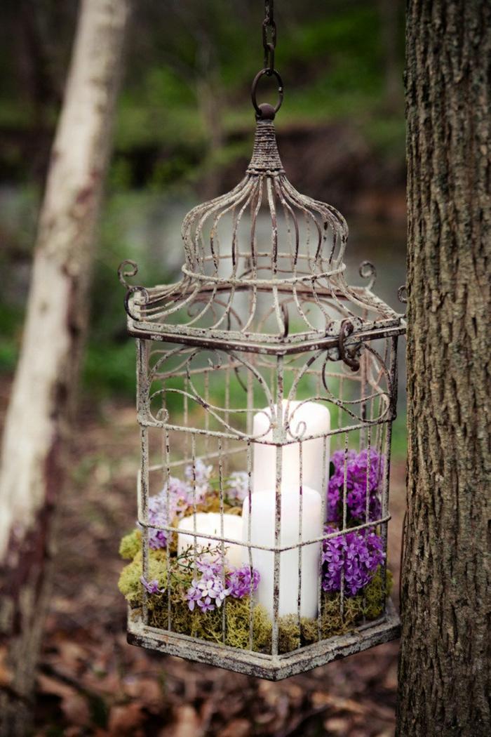 cage-à-oiseaux-cage-antique-ancienne