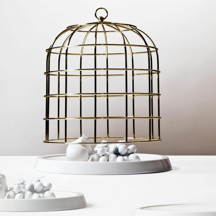 cage-à-oiseaux-décorative-belle-décoration-cage
