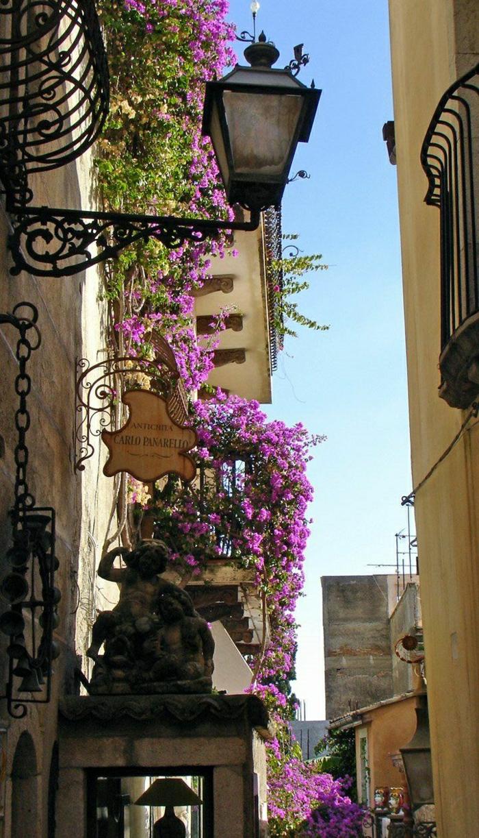 comment-fleurir-son-balcon-avec-pélargonium-de-couleur-violet-joli-balcon-avec-pélargonium