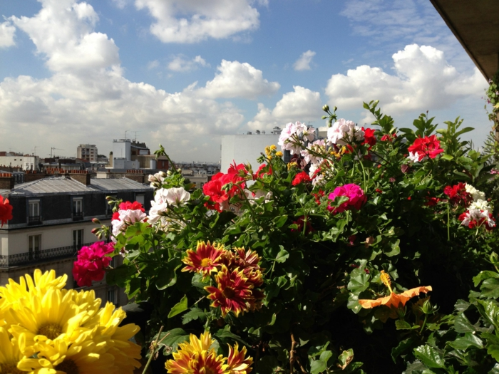 comment-fleurir-son-balcon-beaucoup-de-fleurs-idee-deco-terrasse-jardinière-balcon