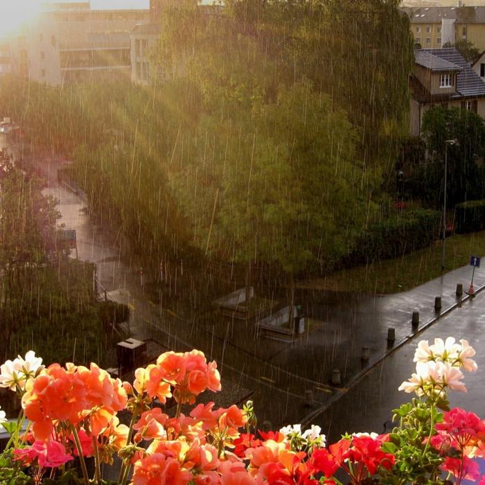 comment-fleurir-son-balcon-beaucoup-de-fleurs-pour-votre-terrasse-avec-belle-vue-vers-le-cité