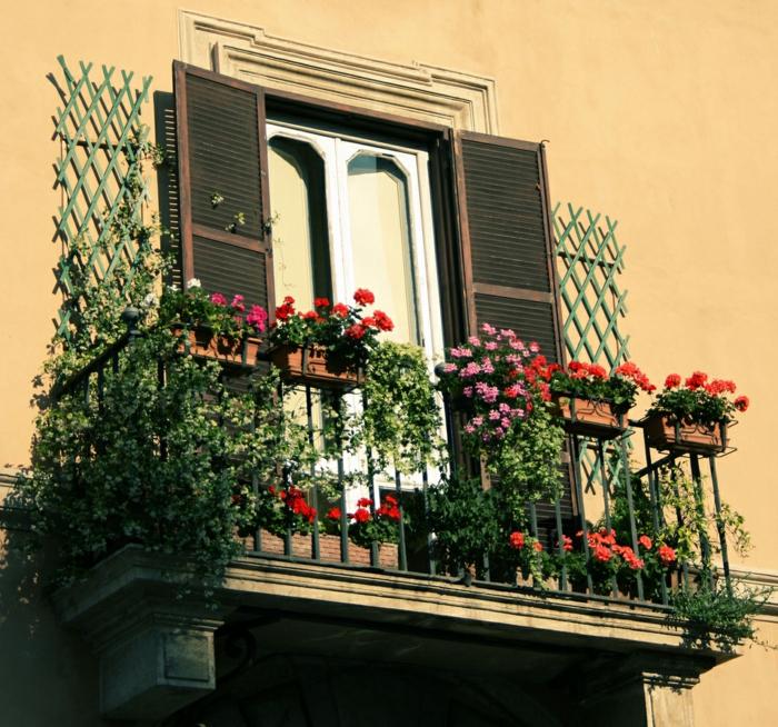 comment-fleurir-son-balcon-fleur-d-extérieur-idee-deco-terrasse