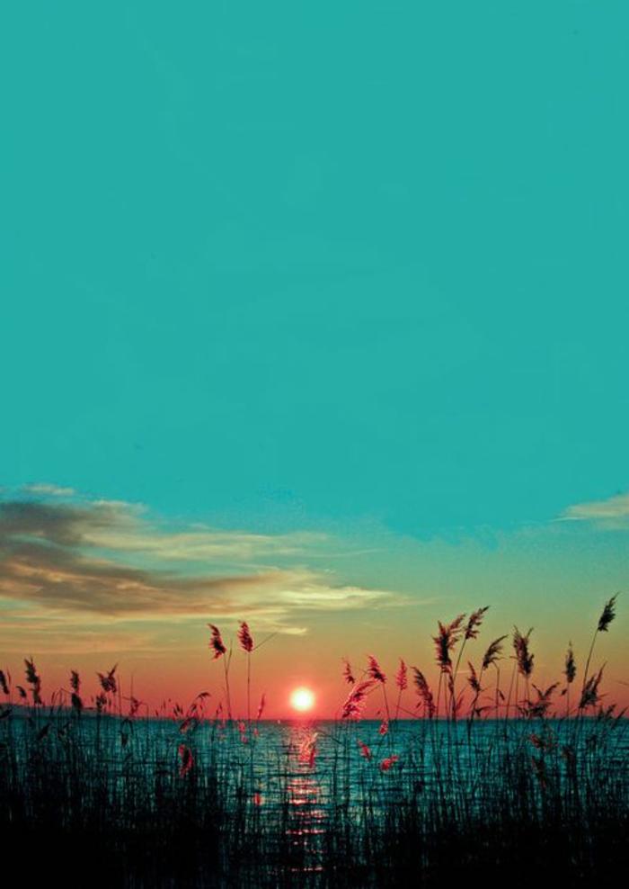 couche-de-soleil-pres-de-la-mer-pour-un-fond-d-écran-paysage