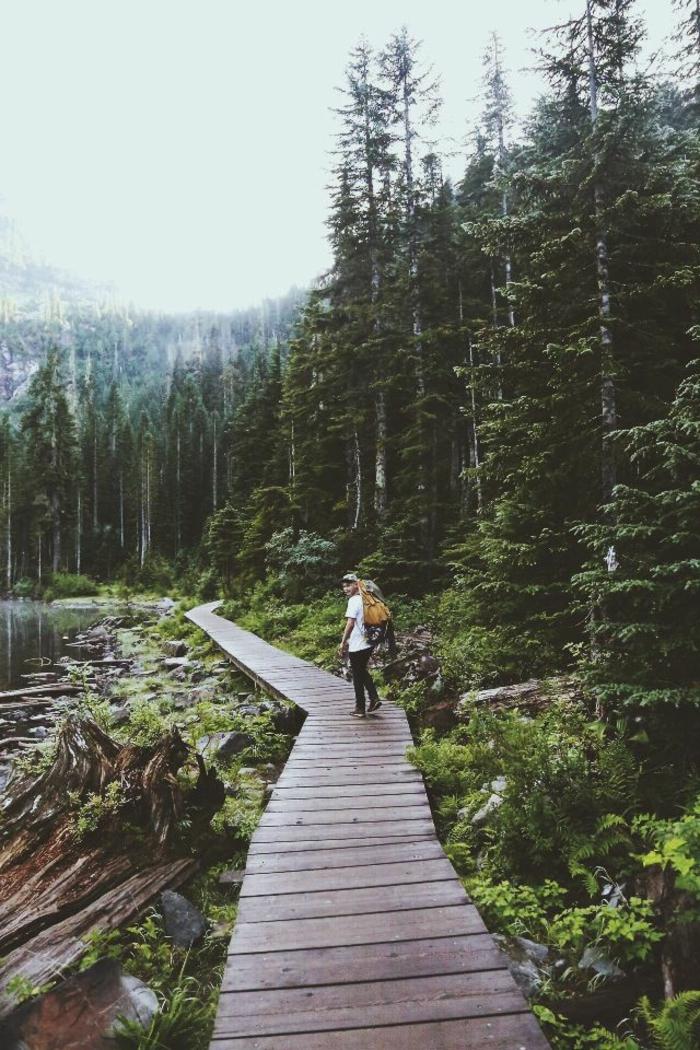 fond-ecran-montagne-alaska-avec-un-homme-qui-marche-dans-la-foret