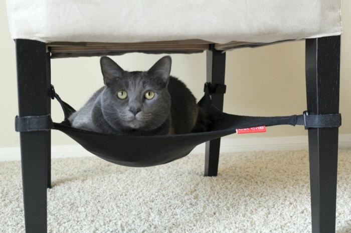 un hamac pour chat va donner grand confort votre animal. Black Bedroom Furniture Sets. Home Design Ideas