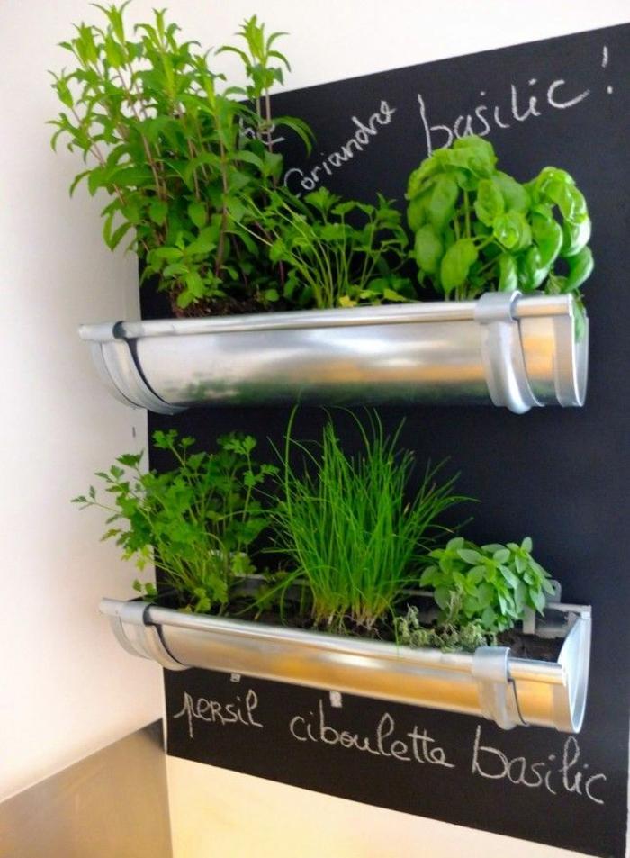 le-tableau-noir-cuisine-ardoise-noire-decoration-murale-interieur-plantes-vertes