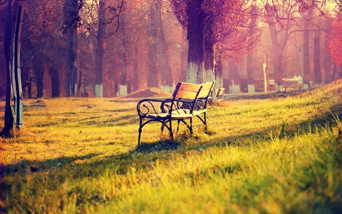 les-plus-beaux-paysages-du-monde-pour-un-fond-d-ecran-hd-gratuit-avec-pelouse-verte-et-banc