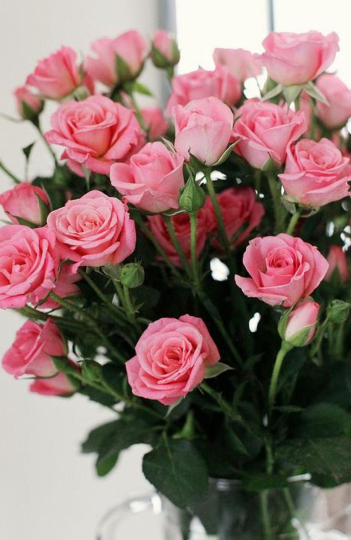La signification des roses quelle couleur de roses offrir - Signification rose rose ...