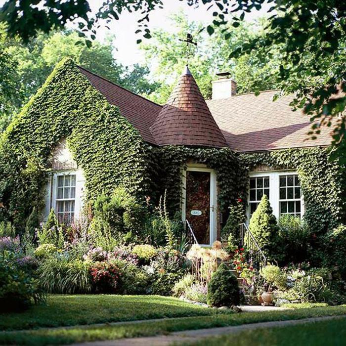 Les plantes grimpantes beaucoup d 39 id es pour le jardin for Plante maison