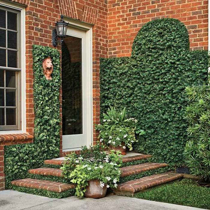 maison-de-briques-rouges-plantes-grimpantes-escalier-avec-plante-grimpante-ombre