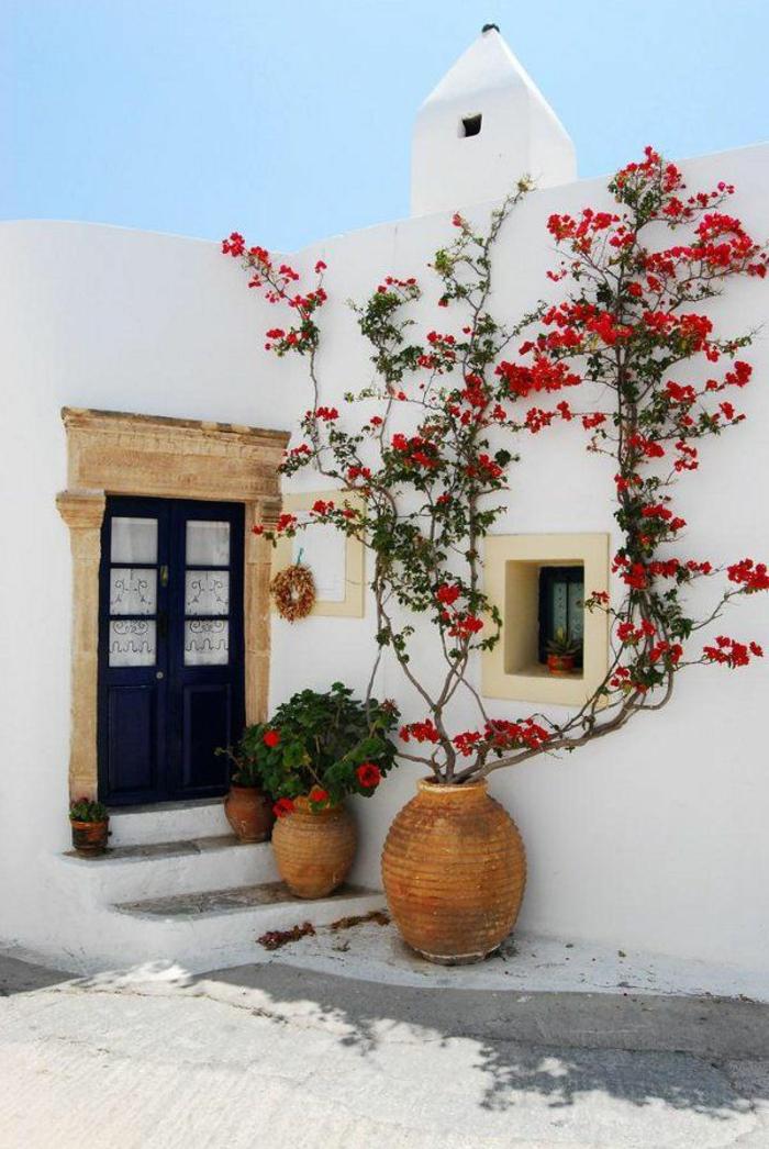 plante-grimpante-en-pot-jolie-maison-de-style-grecque-blanche-maison-porte-d-entrée