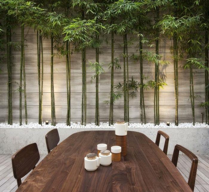 planter-des-bambous-bambous-en-jardinière
