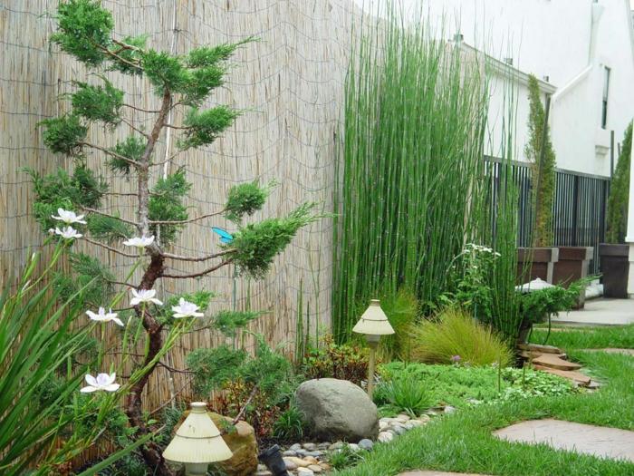 planter-des-bambous-joli-design-de-jardin-à-touche-japonaise