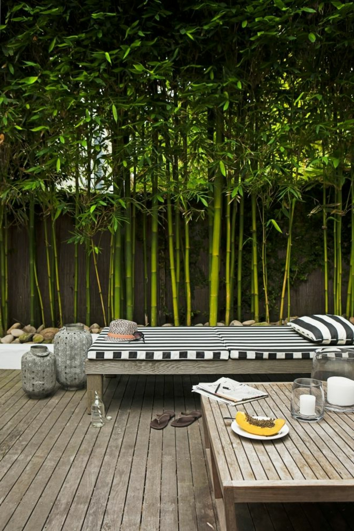 planter-des-bambous-terrasse-en-bois-extérieur