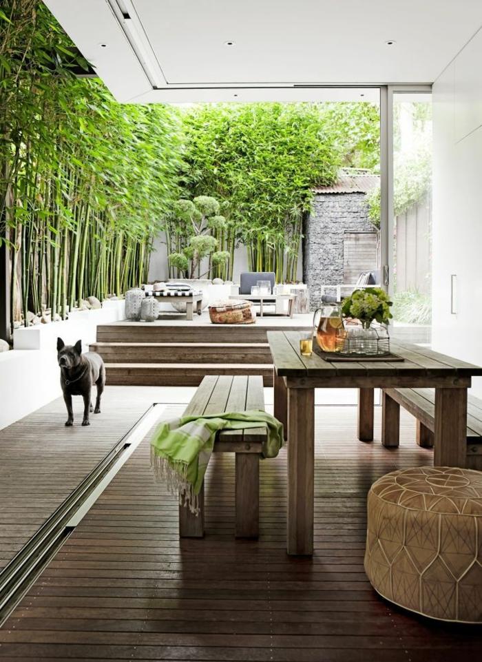 planter-des-bambous-un-patio-moderne-jardinières-bambous