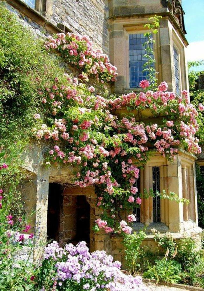 plantes-grimpantes-extérieur-maison-avec-murs-en-pierre-jardin-avec-beaucoup-de-fleurs