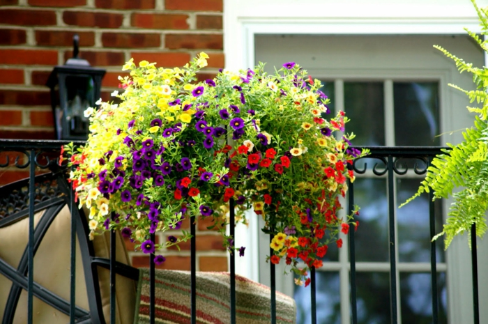 quel-type-de-fleurs-pour-la-terrasse-une-jolie-terrasse-avec-beaucoup-de-fleurs