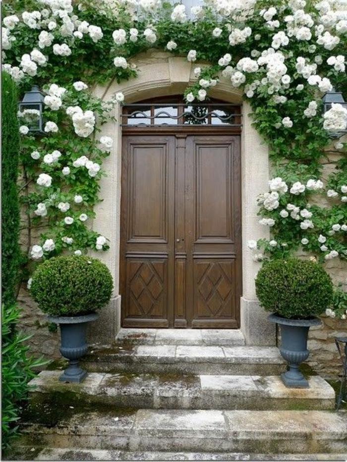 roses-blanches-plante-grimpante-ombre-rose-blanche-porte-d-entrée-en-bois-foncé