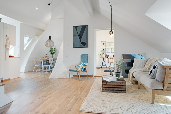 salon-scandinave-appartement-cosy-scandinave