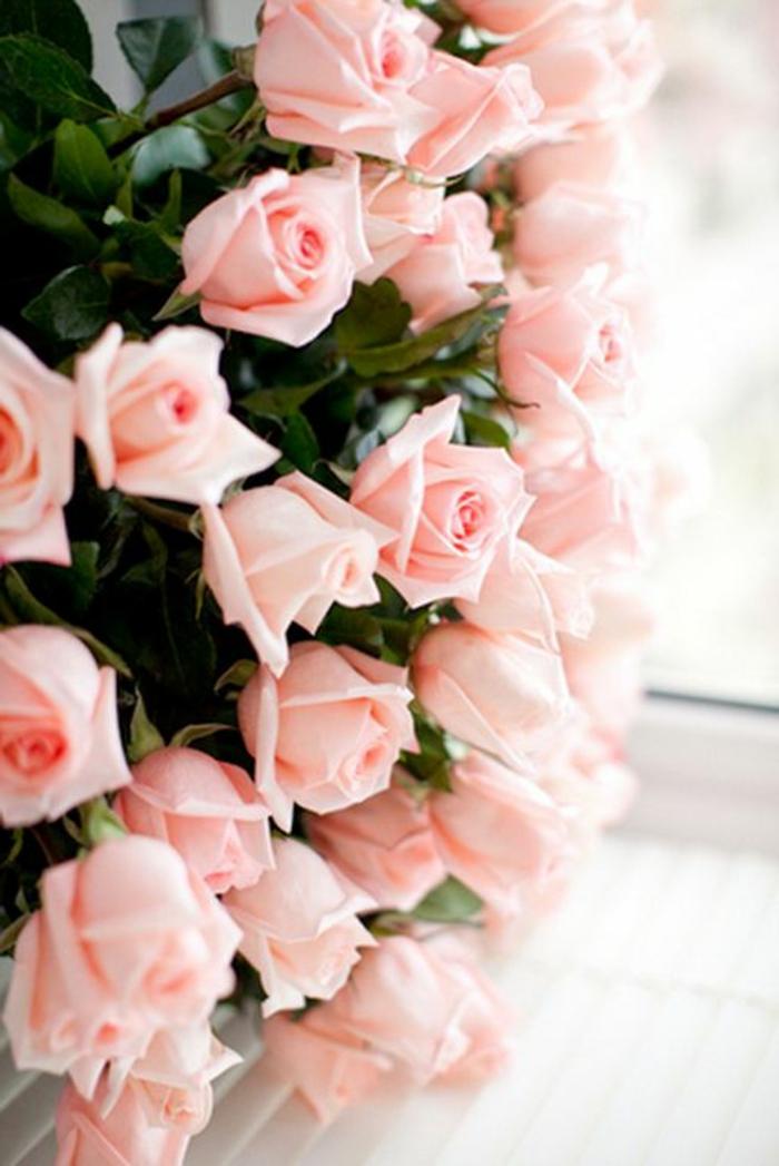 un-joli-bouquet-de-rose-signification-des-roses-comment-choisir-un-boquet-de-roses