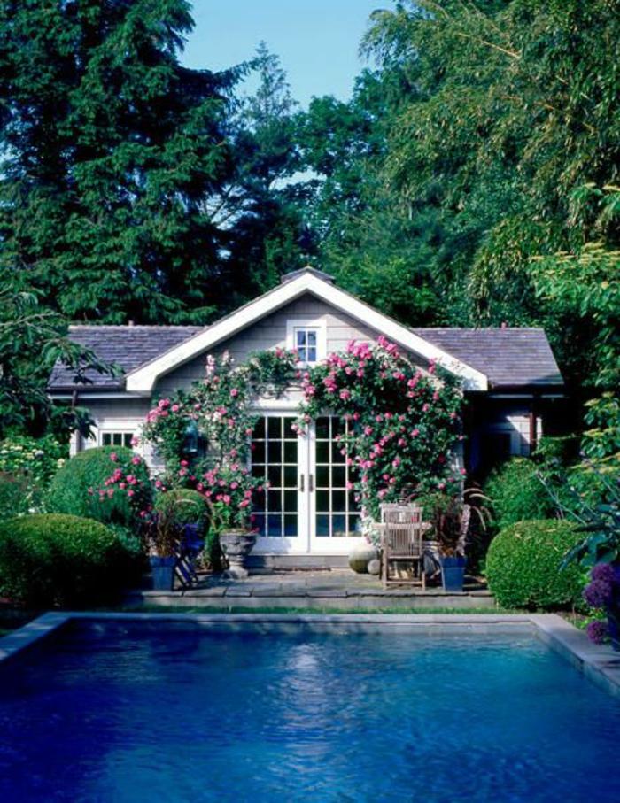 une-jolie-maison-avec-plante-grimpante-ombre-piscine-grande-dans-le-jardin-haie-de-jardin-vert