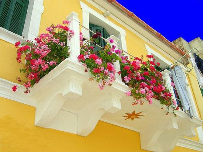 une-terrasse-avec-fleurs-un-joli-balcon-jardiière-balcon-ensoleillé-belle-vue