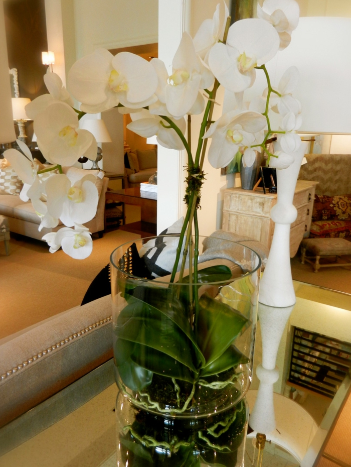 vase-ikea-baquet-vase-cylindrique-vase-en-verre-transparent-orchidée-vert-idée