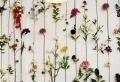Comment décorer son salon d'une manière originale, voici quelques idéеs!