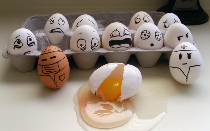 1-humour-images-drôles-intéressantes-drôle-d-image-oeufs-resized