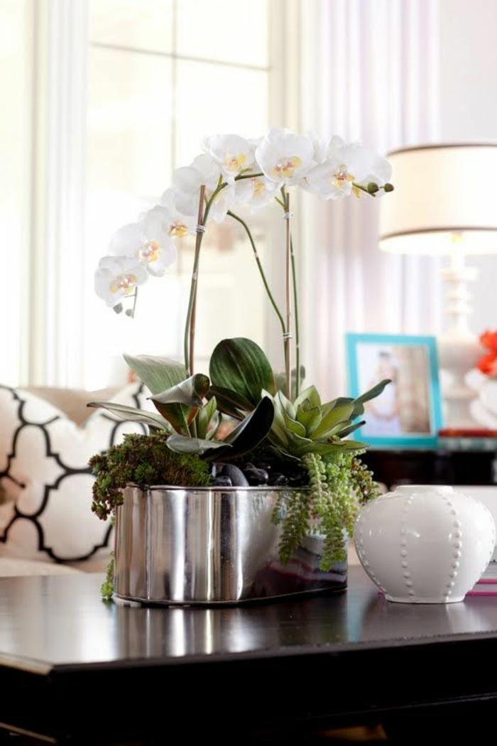 1-jolie-decoration-avec-orchidées-blanches-pour-le-salon-moderne-de-style-de-luxe