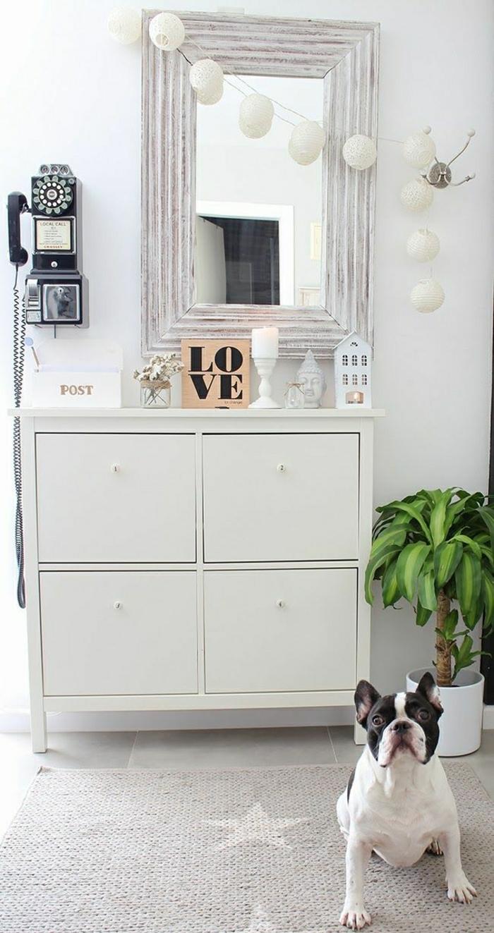 2-les-meubles-à-chaussures-dans-le-couloir-avec-plante-verte-miroir-moderne-et-meuble-gris